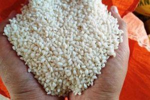 Kẹt đường sang Trung Quốc, thị trường gạo nếp 'đóng băng'