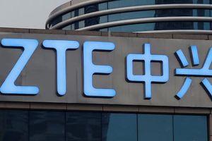 Đảng Dân chủ Mỹ cảnh báo không sử dụng điện thoại ZTE hoặc Huawei