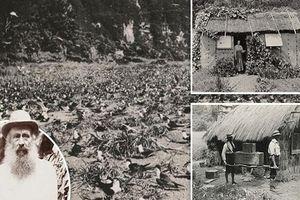 Ly kỳ câu chuyện Robinson ngoài đời thực sống trên đảo hoang suốt 30 năm