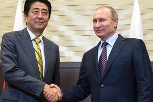 Nhật xắn tay tái thiết Syria: Trái ngọt Nga trồng