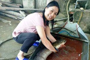 Cận cảnh cá lệch 'khủng' dài 1,6m giá 16 triệu đồng ở Nghệ An