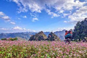 Hà Giang có gì lạ mà ai cũng muốn ghé thăm vào tháng 10?