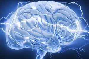 Bí quyết để sử dụng hết tiềm năng của não bộ