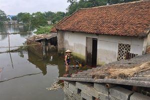 Dân Chương Mỹ phải sống chung với ngập lụt 10 – 20 năm nữa