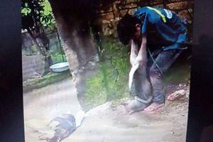 Kẻ trộm chó bị đánh hội đồng, trói vào cây bên đường