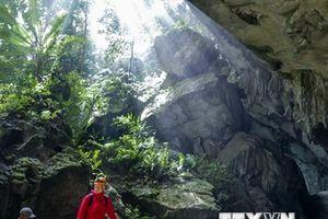 Phát hiện 44 hang động mới trong khu vực Phong Nha-Kẻ Bàng