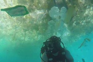 Thợ lặn bơi giữa đại dương trong xanh ngập đầy rác nhựa