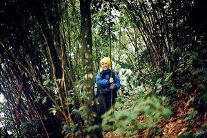 Những điều cần lưu ý khi dã ngoại vườn quốc gia Tam Đảo