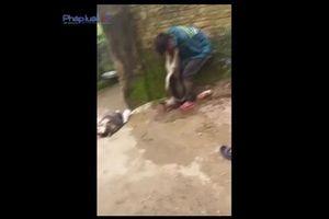 Clip: Người dân bắt 'cẩu tặc', cột chó vào cổ