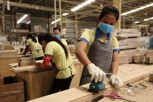 Thủ tướng sẽ đối thoại với các doanh nghiệp ngành chế biến gỗ và lâm sản xuất khẩu