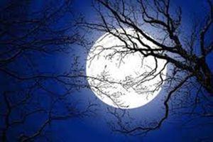 Đêm trăng rằm năm ấy