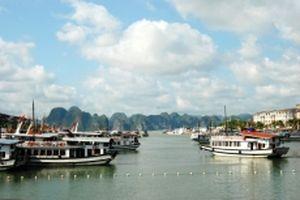 Đình chỉ 20 tàu du lịch trên vịnh Hạ Long