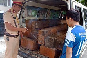 Tài xế không có giấy phép lái xe vận chuyển gỗ lậu