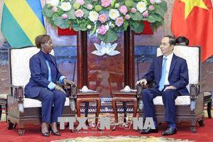 Đề nghị tăng cường trao đổi đoàn cấp cao giữa Việt Nam với Rwanda và Guinea