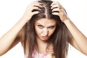 Những loại nước gội đầu tự nhiên giúp ngăn ngừa rụng tóc và gầu trong nháy mắt