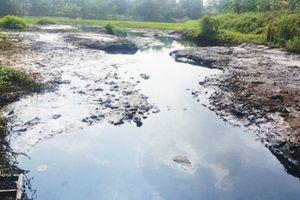 Xử lý ô nhiễm sông Cầu Bây: Thiếu giải pháp căn cơ