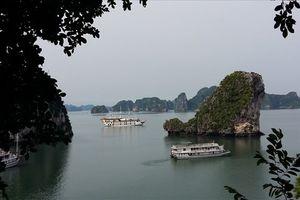 Xôn xao du thuyền siêu sang sắp ra mắt trên vịnh Hạ Long: 'Vịnh Hạ Long không có tàu đó!'