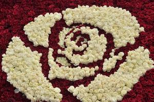 Lộng lẫy kim tự tháp được kết từ hàng trăm nghìn đóa hồng