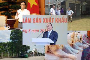 Không có dịch bệnh tại các xã ngập úng ở Chương Mỹ; Gần 88.000 tấn thịt gà giá rẻ về Việt Nam