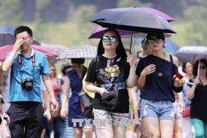 Nắng nóng tiếp tục 'thiêu đốt' Nhật Bản