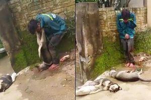 Cẩu tặc bị người dân treo xác chó lên cổ: Tự xử là vô tình đẩy mình vào vòng lao lý