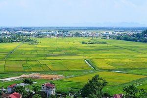 Những trường hợp không được đấu giá đất công ích tại Lai Châu