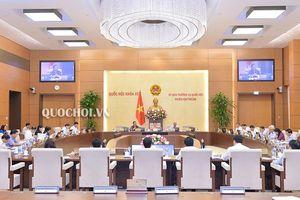 Ủy ban Thường vụ Quốc hội cho ý kiến về Luật sửa đổi, bổ sung một số điều của Luật Giáo dục đại học