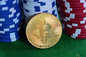 Giá Bitcoin hôm nay 8/8: Chìm sâu trong khủng hoảng