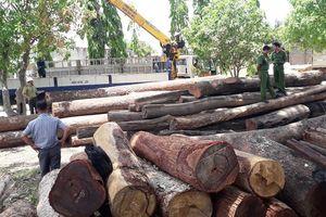 Để lâm tặc chuyển gỗ lậu qua biên giới, nhiều cán bộ bị kỷ luật