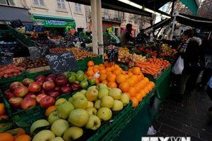 Dự báo tăng trưởng kinh tế khó đạt được của Chính phủ Pháp