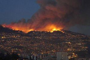 Bồ Đào Nha tiếp tục sơ tán dân do cháy rừng lan rộng