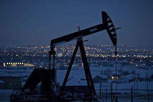 Chuyên gia tiết lộ lý do Trung Quốc không trả đũa dầu mỏ của Mỹ