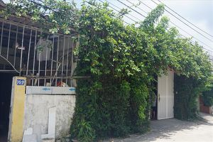 Nghệ An: Địa phương hứa 'treo', 105 hộ dân kêu cứu