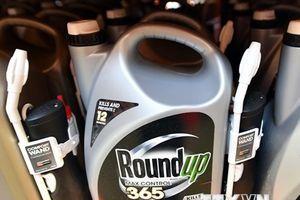 Công ty mẹ của Monsanto khẳng định thuốc diệt cỏ Roundup an toàn