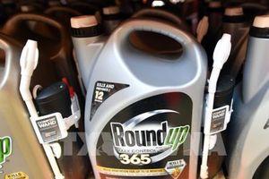 Thiếu cảnh báo tác hại của chất diệt cỏ, Monsanto phải bồi thường 289 triệu USD