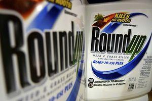 Thuốc diệt cỏ gây ung thư, Monsanto phải đền bù 289 triệu USD