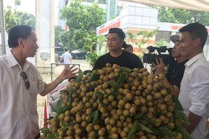 'Nông dân nhúng quả nhãn vào lưu huỳnh để làm đẹp vỏ' là tin thất thiệt