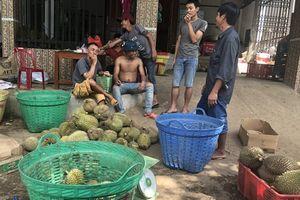 Lâm Đồng thông tin chính thức về 'cơn sốt' hạt sầu riêng