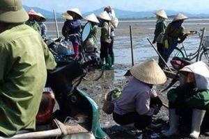Vụ thu 'tô' bãi triều Phú Hải: Đừng để...'con giun xéo mãi cũng oằn'