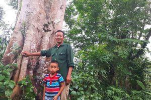 Trả nợ rừng xanh