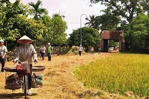 Ảnh hưởng của hương ước đối với sự phát triển của làng xã hiện nay
