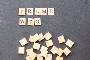 Tuyên bố an ninh quốc gia của Hoa Kỳ về thuế quan và cuộc khủng hoảng tại WTO