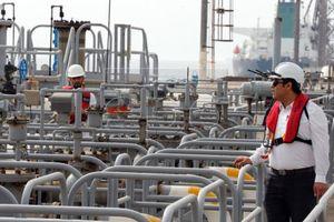 Giá dầu vẫn chứng kiến một tuần đi xuống do đà giảm sâu trong phiên giữa tuần