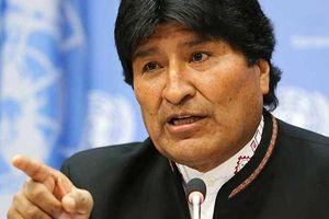 Tổng thống Bolivia yêu cầu minh bạch thông tin tài chính chính trị gia