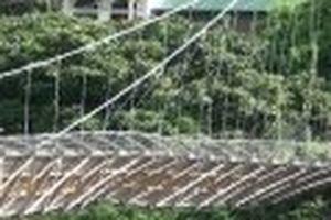 Cần sớm khắc phục sự cố cầu treo Hải Sơn qua sông Mã