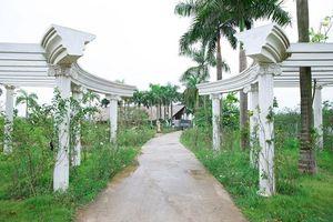Công viên hoa hồng lớn nhất Việt Nam sẽ mở cửa từ 2/9
