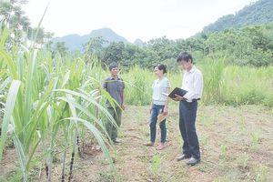 Nâng cao chất lượng sinh hoạt chi bộ ở các thôn, bản miền núi