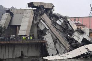 Cập nhật hiện trường giải cứu nạn nhân vụ sập cầu Italy: Chính phủ vào cuộc