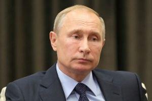Tổng thống Nga khẳng định sẵn sàng gặp lãnh đạo Triều Tiên