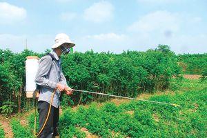 Nếu đủ bằng chứng, Việt Nam sẽ loại bỏ thuốc diệt cỏ gây ung thư